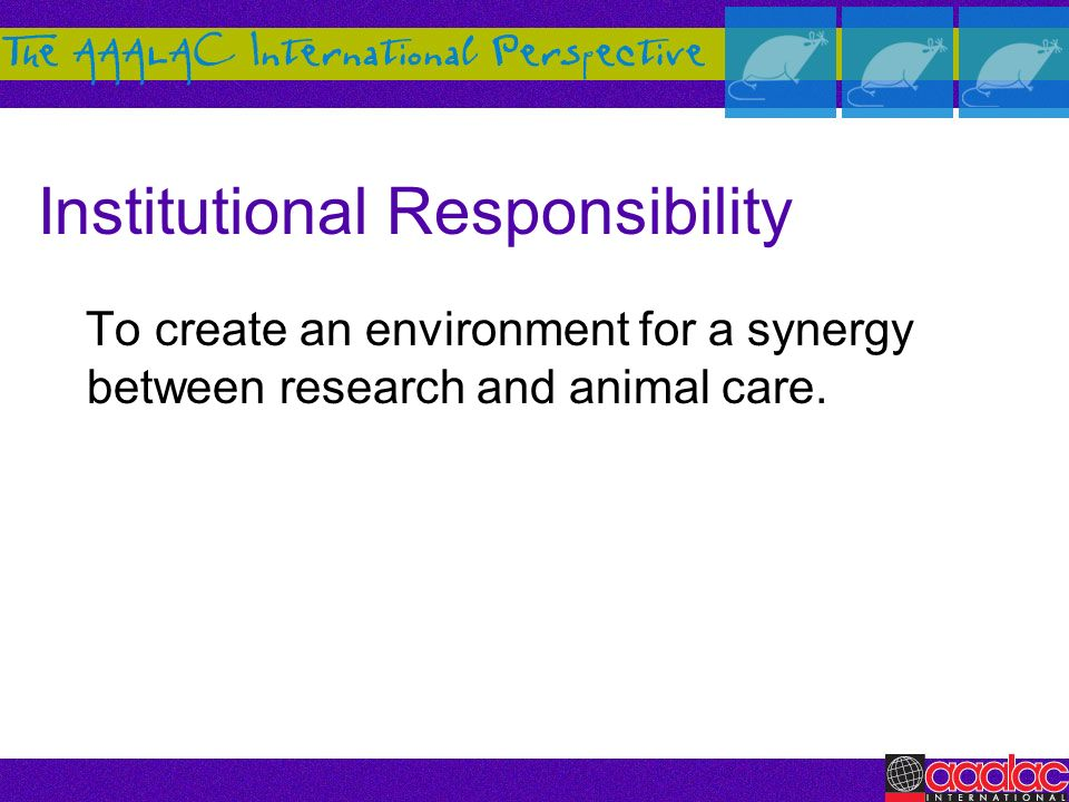 Institutional Responsibility To create an environment for a synergy between research and animal care.