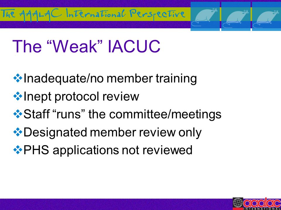 The Weak IACUC Inadequate/no member training Inept protocol review Staff runs the committee/meetings Designated member review only PHS applications no