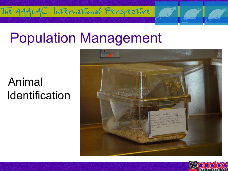 Population Management Animal Identification