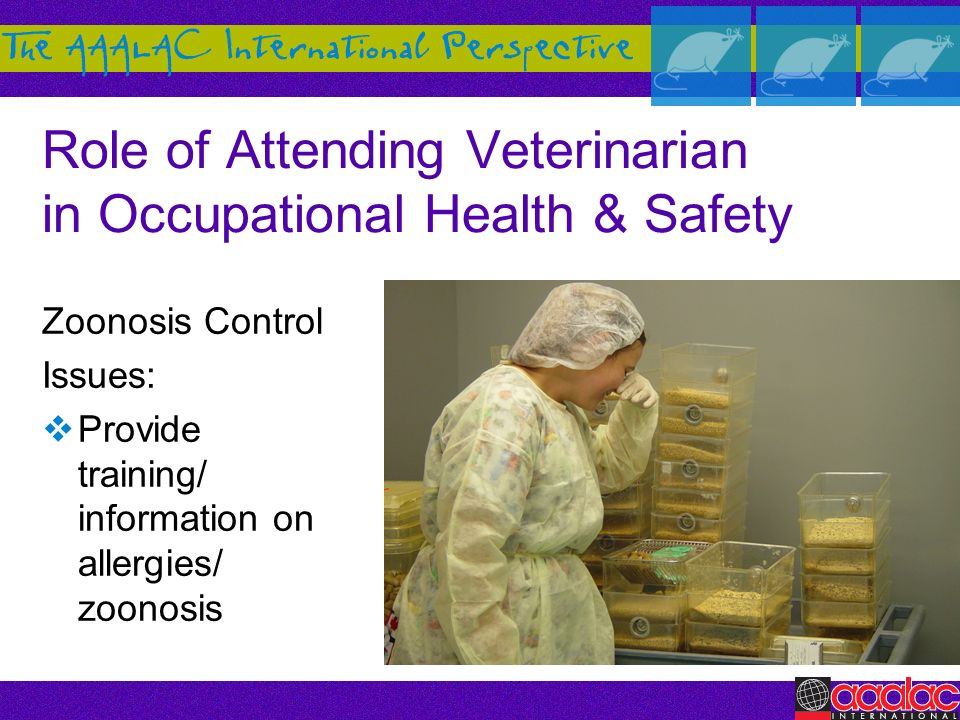 Role of Attending Veterinarian in Occupational Health & Safety Zoonosis Control Issues: Provide training/ information on allergies/ zoonosis