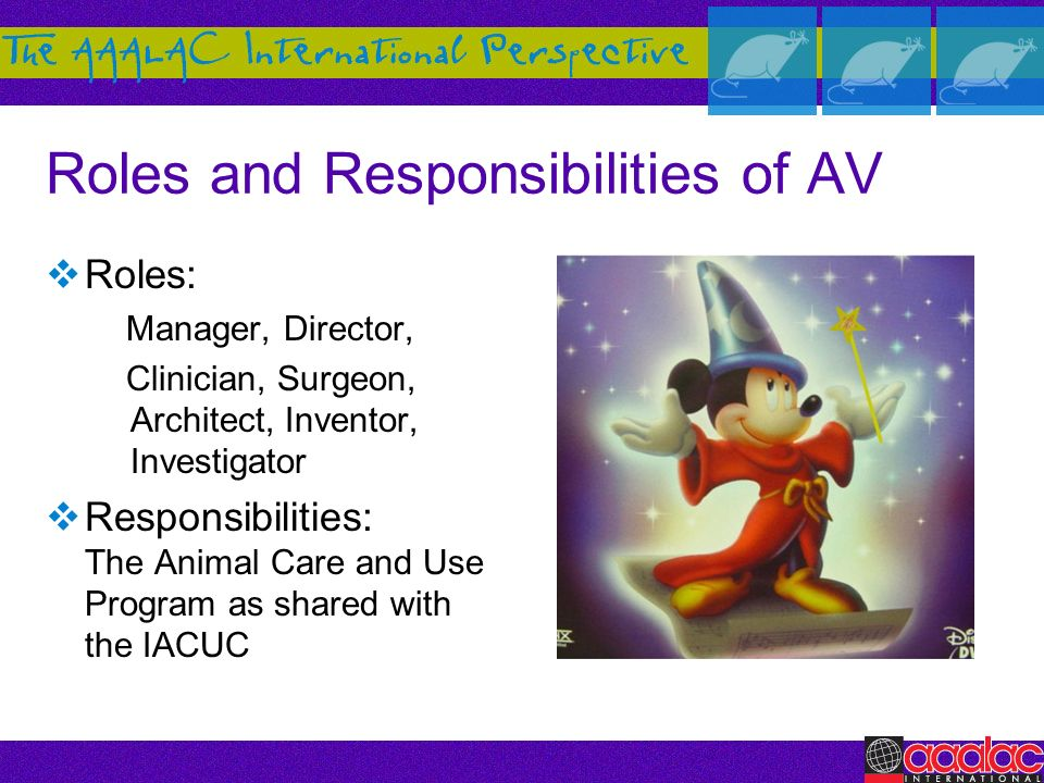 Roles and Responsibilities of AV Roles: Manager, Director, Clinician, Surgeon, Architect, Inventor, Investigator Responsibilities: The Animal Care and