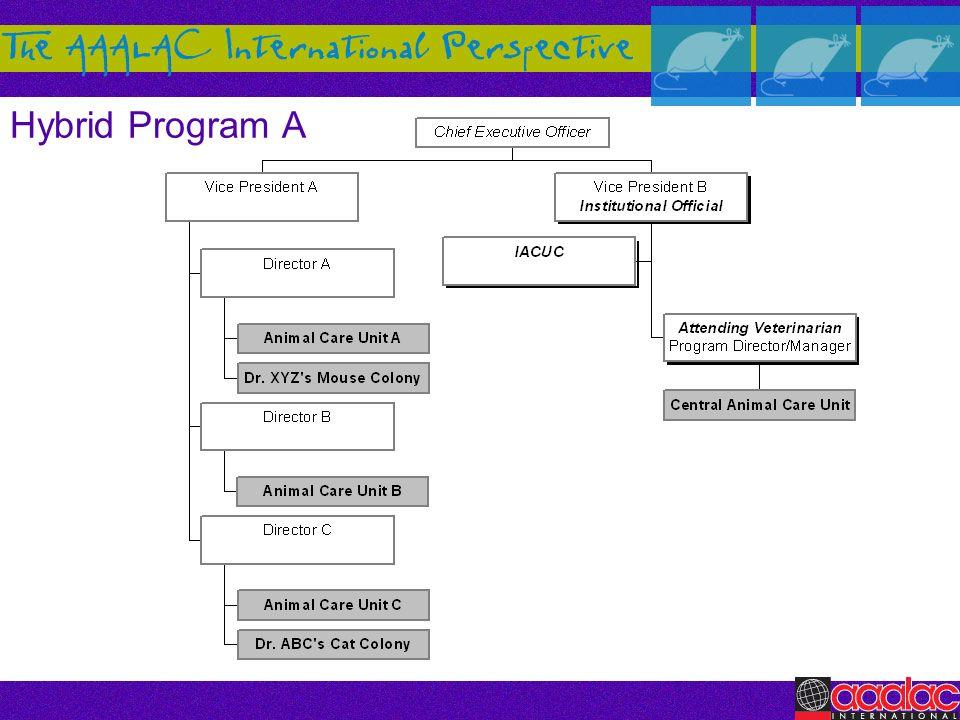 Hybrid Program A