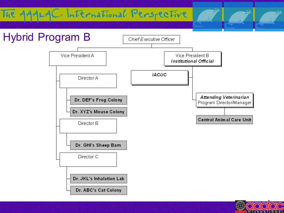 Hybrid Program B