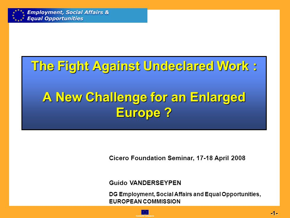 Commission européenne 1 -1- The Fight Against Undeclared Work : A New Challenge for an Enlarged Europe .