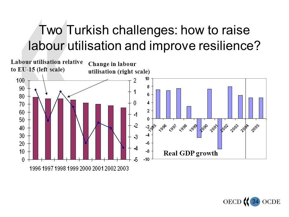 34 Two Turkish challenges: how to raise labour utilisation and improve resilience.
