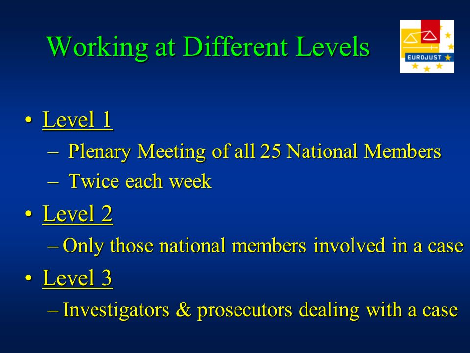 Working at Different Levels Level 1Level 1 – Plenary Meeting of all 25 National Members – Twice each week Level 2Level 2 –Only those national members