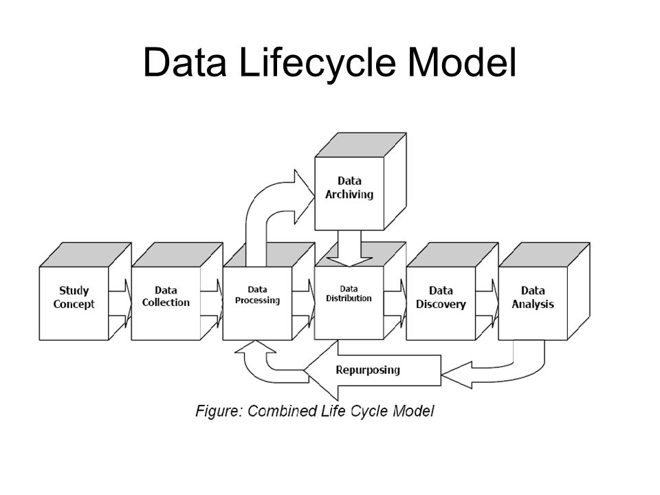 Data Lifecycle Model