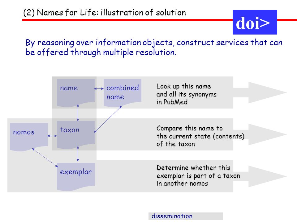 dissemination nametaxon combined name exemplar nomos By reasoning over information objects, construct services that can be offered through multiple resolution.