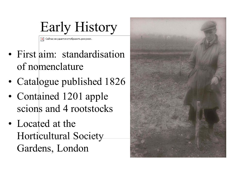 Early History First aim: standardisation of nomenclature Catalogue published 1826 Contained 1201 apple scions and 4 rootstocks Located at the Horticul