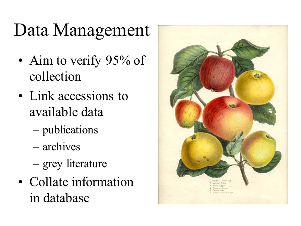 Data Management Aim to verify 95% of collection Link accessions to available data –publications –archives –grey literature Collate information in data