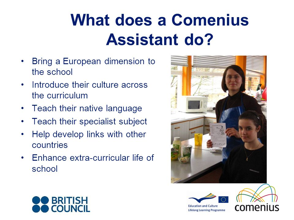 What does a Comenius Assistant do.