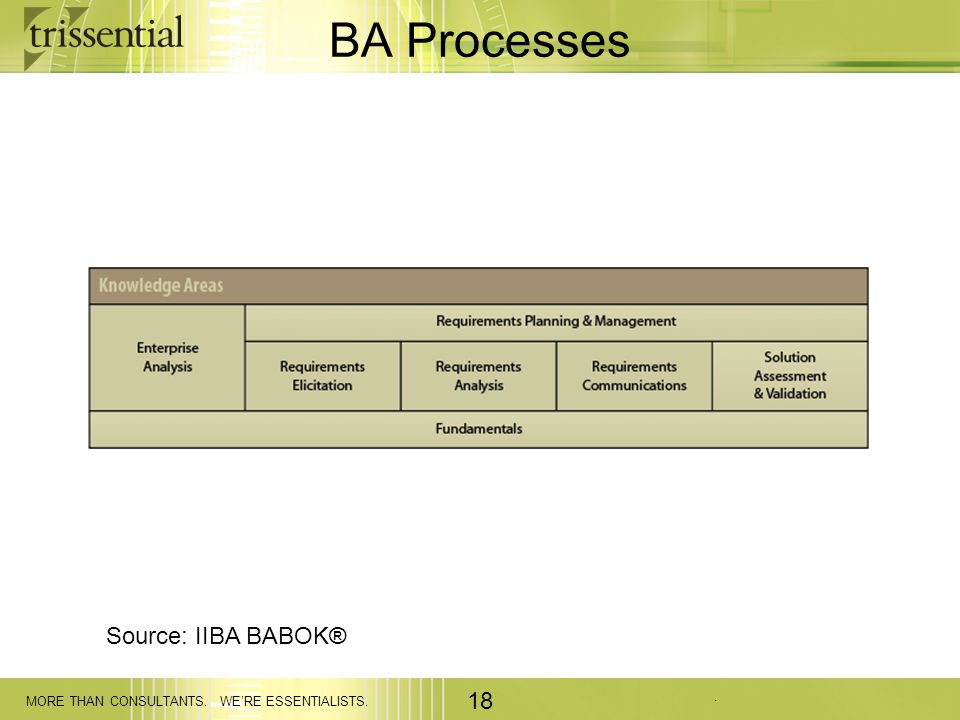 . MORE THAN CONSULTANTS. WERE ESSENTIALISTS. 18 BA Processes Source: IIBA BABOK®