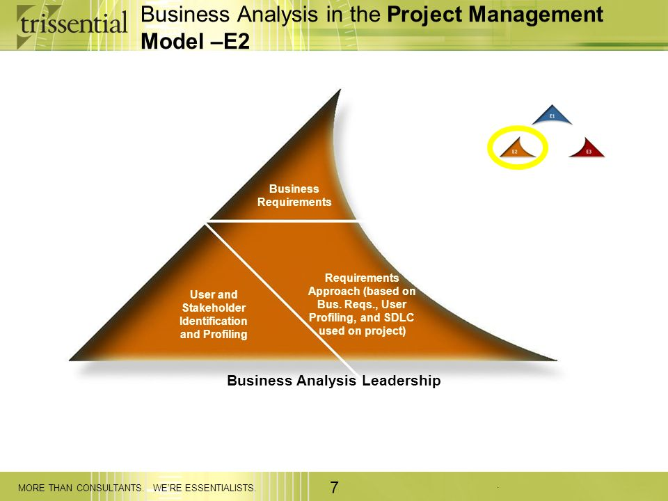 . MORE THAN CONSULTANTS. WERE ESSENTIALISTS. 7 Business Analysis in the Project Management Model –E2 Business Requirements User and Stakeholder Identi