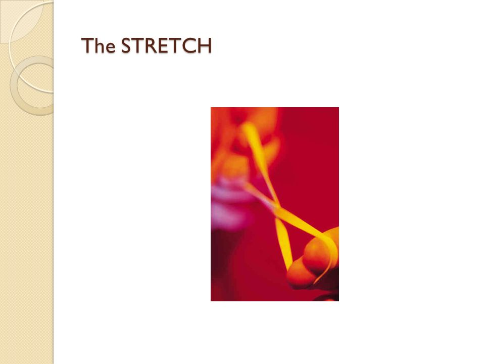The STRETCH