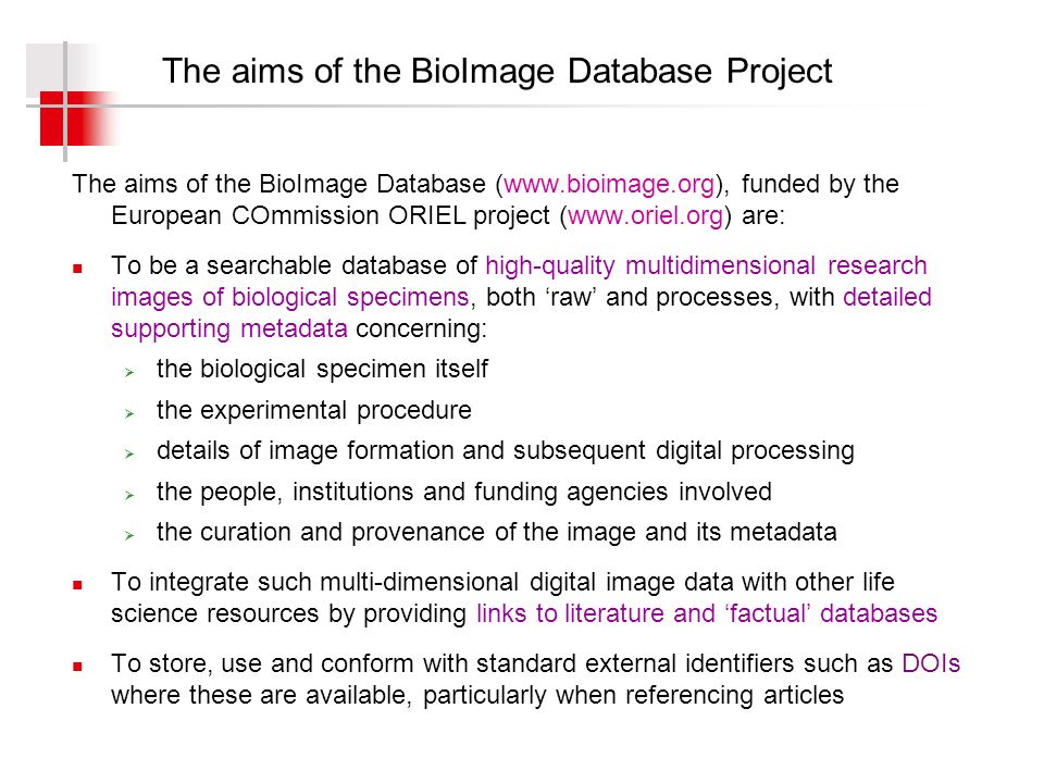 The basic BioImage metadata model (with thanks to ) Cell or organism Experiment or study Image capture Image sets of multidimensional images, including videos Subject or specimen Researcher Photographer or microscopist Camera or microscope Experimental conditions or manipulations