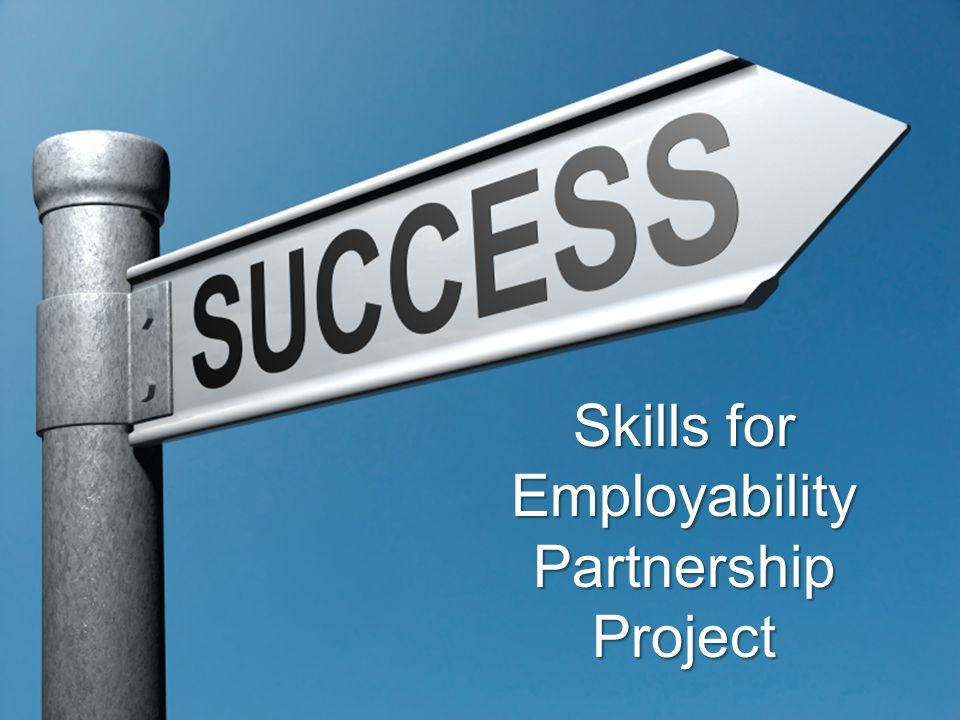 Skills for Employability Partnership Project