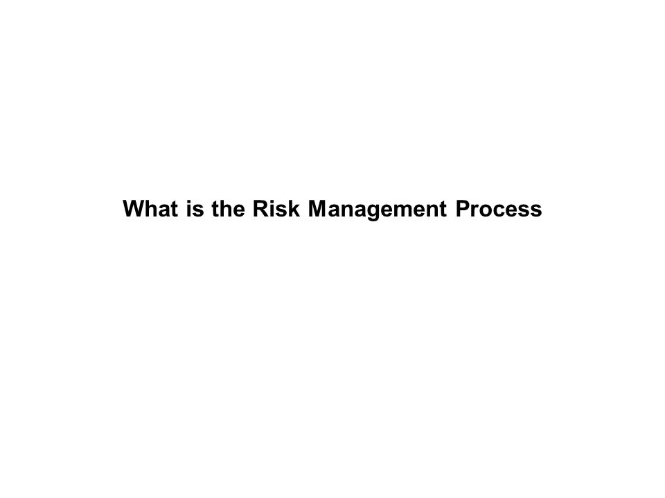 What is the Risk Management Process