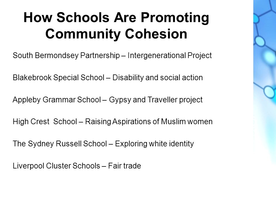 How Schools Are Promoting Community Cohesion South Bermondsey Partnership – Intergenerational Project Blakebrook Special School – Disability and social action Appleby Grammar School – Gypsy and Traveller project High Crest School – Raising Aspirations of Muslim women The Sydney Russell School – Exploring white identity Liverpool Cluster Schools – Fair trade