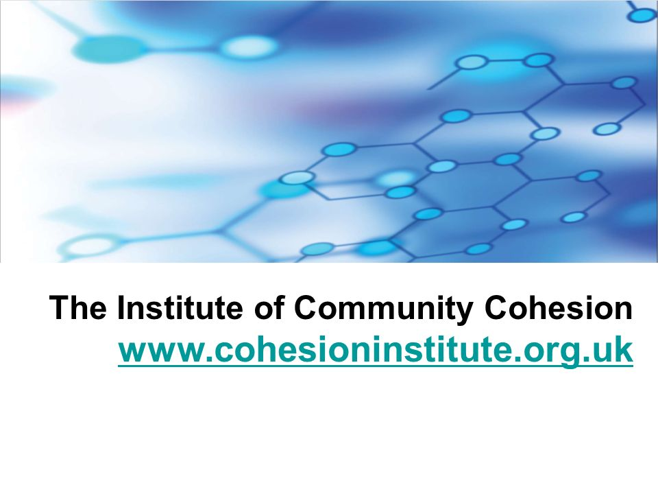 The Institute of Community Cohesion www.cohesioninstitute.org.uk