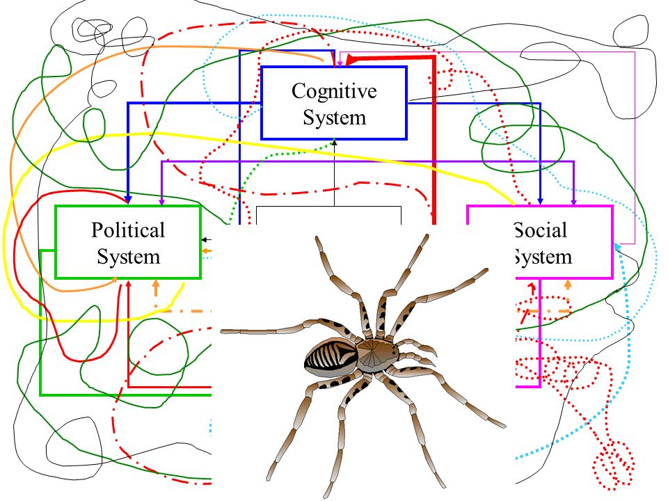 Scientist Political System Social System... as researcher Cognitive System