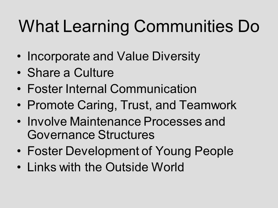 What Learning Communities Do Incorporate and Value Diversity Share a Culture Foster Internal Communication Promote Caring, Trust, and Teamwork Involve Maintenance Processes and Governance Structures Foster Development of Young People Links with the Outside World