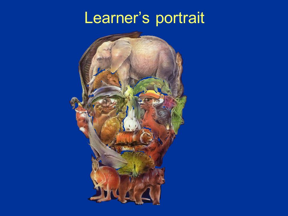Adult learners needs: Psychological; Linguistic; Practical. Why we teach / they learn?