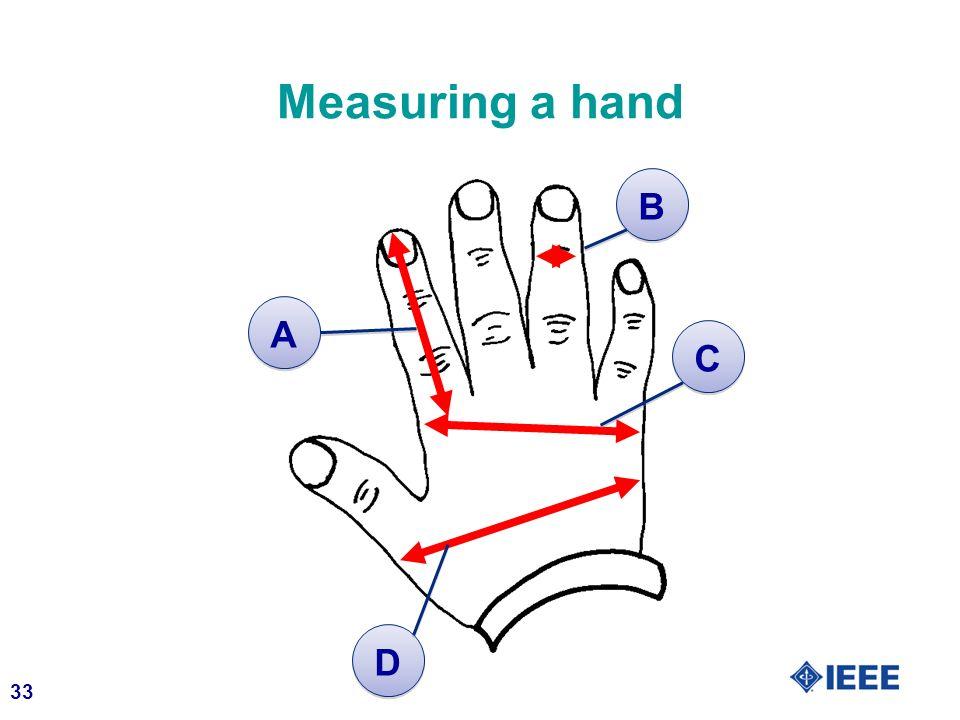 33 Measuring a hand A A B B C C D D