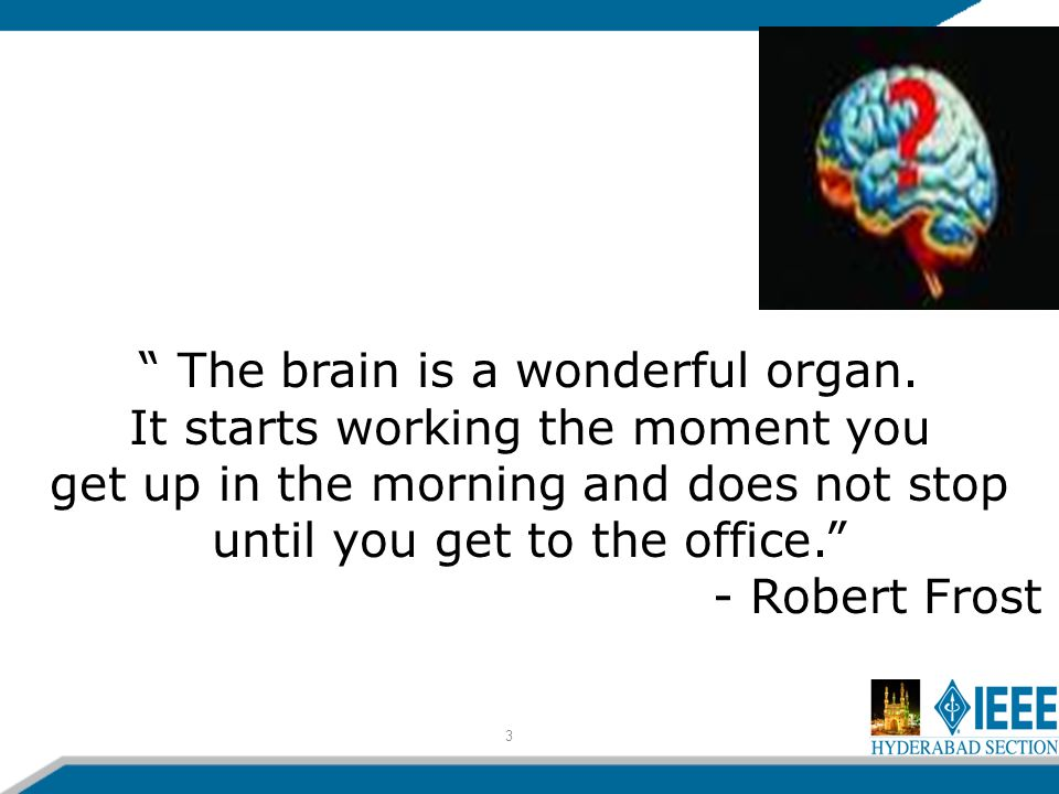 3 The brain is a wonderful organ.