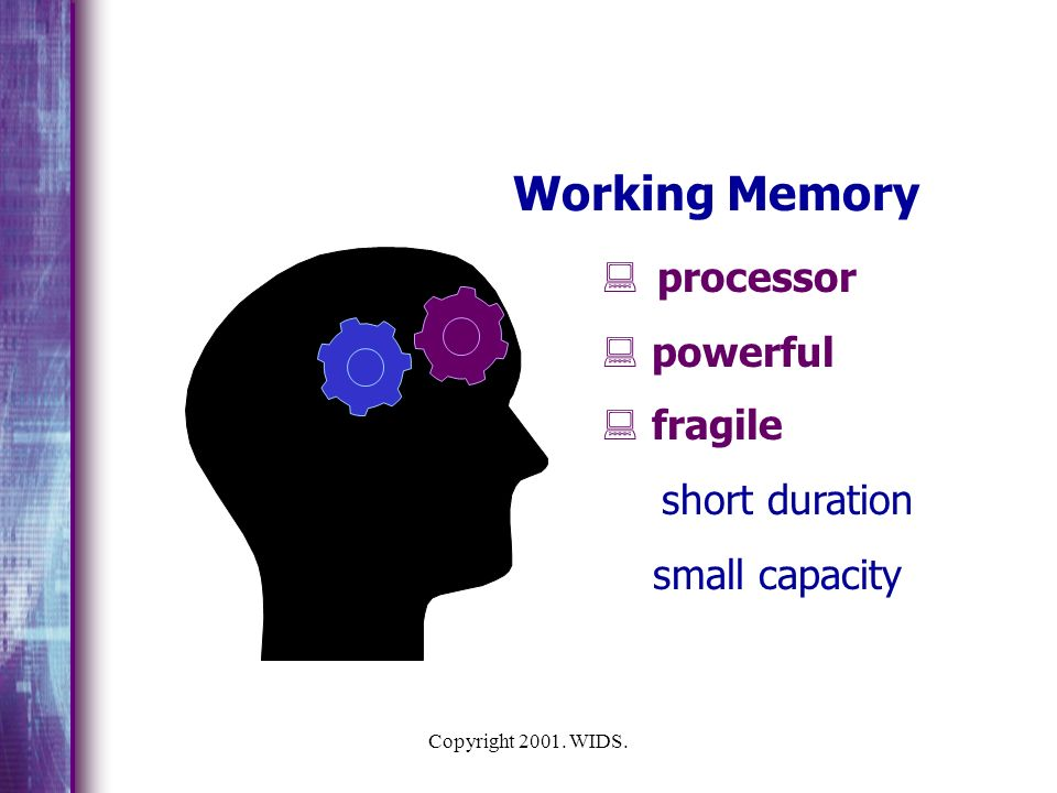 Copyright 2001.WIDS. Sensing Memory What are we doing to the learners mind.