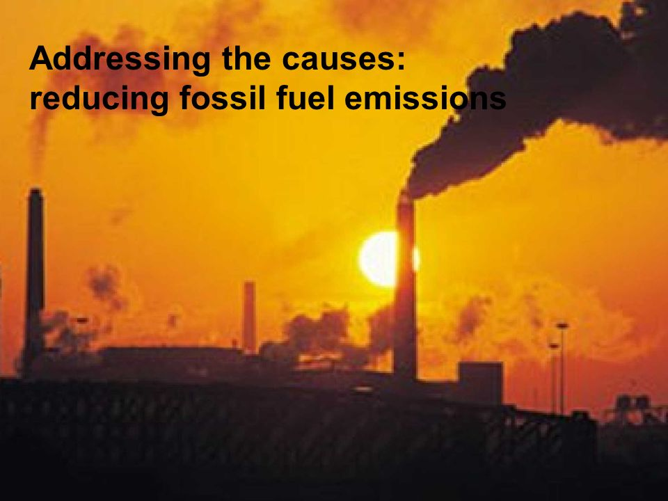Addressing the causes: reducing fossil fuel emissions