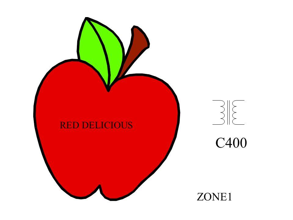 RED DELICIOUS C400 ZONE1