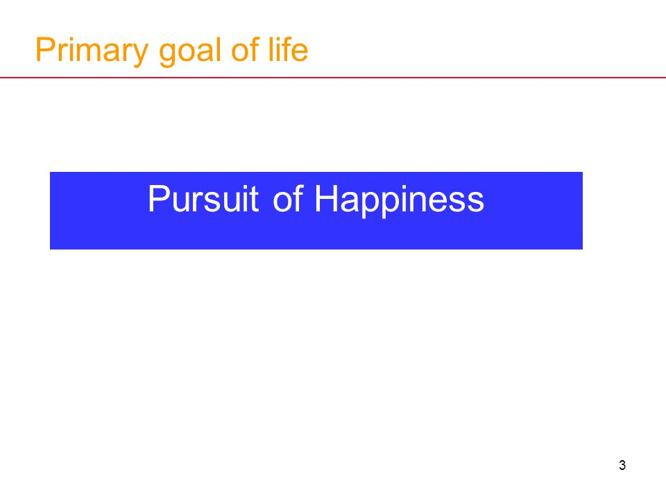 3 Primary goal of life Pursuit of Happiness