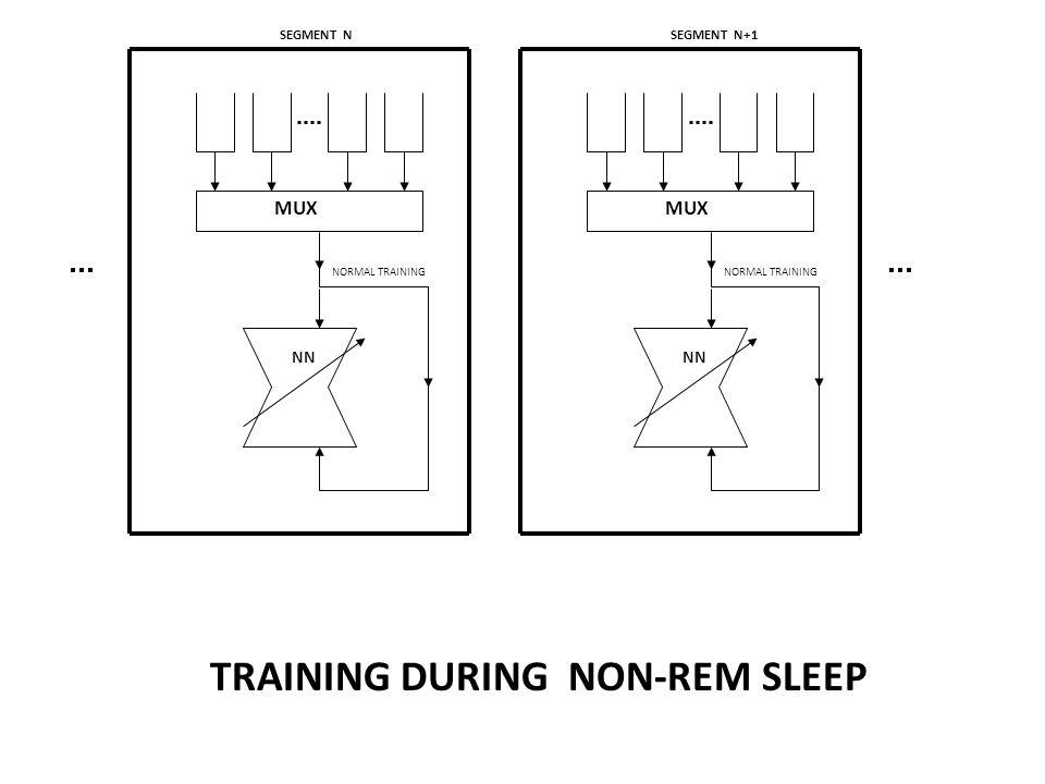 SEGMENT N NN NORMAL TRAINING MUX TRAINING DURING NON-REM SLEEP SEGMENT N+1 NN NORMAL TRAINING MUX