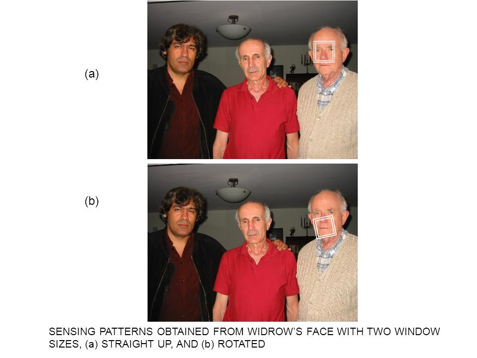 SENSING PATTERNS OBTAINED FROM WIDROWS FACE WITH TWO WINDOW SIZES, (a) STRAIGHT UP, AND (b) ROTATED (a) (b)