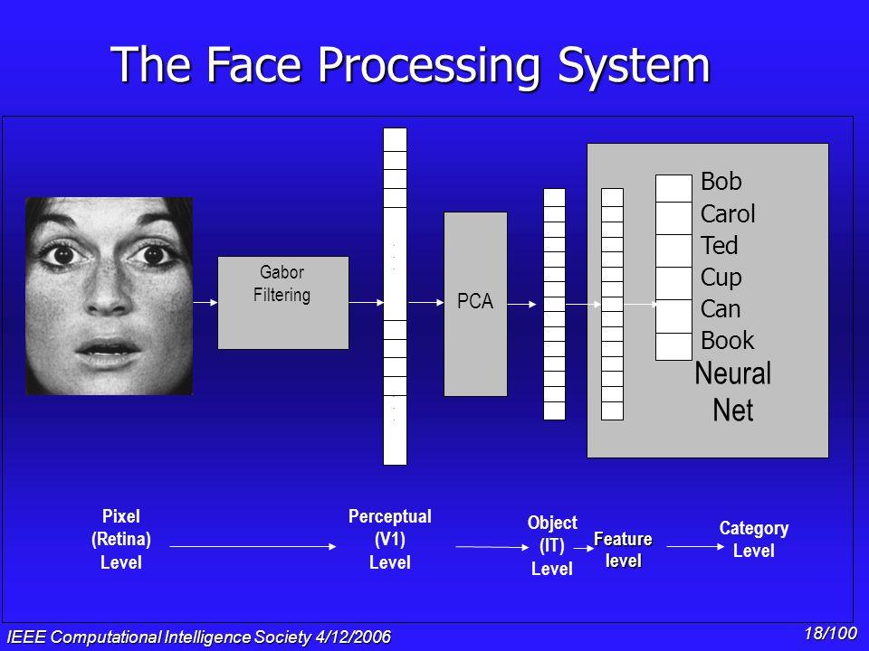 IEEE Computational Intelligence Society 4/12/2006 17/100 PCA............ Gabor Filtering Bob Carol Ted Alice Neural Net Pixel (Retina) Level Object (I