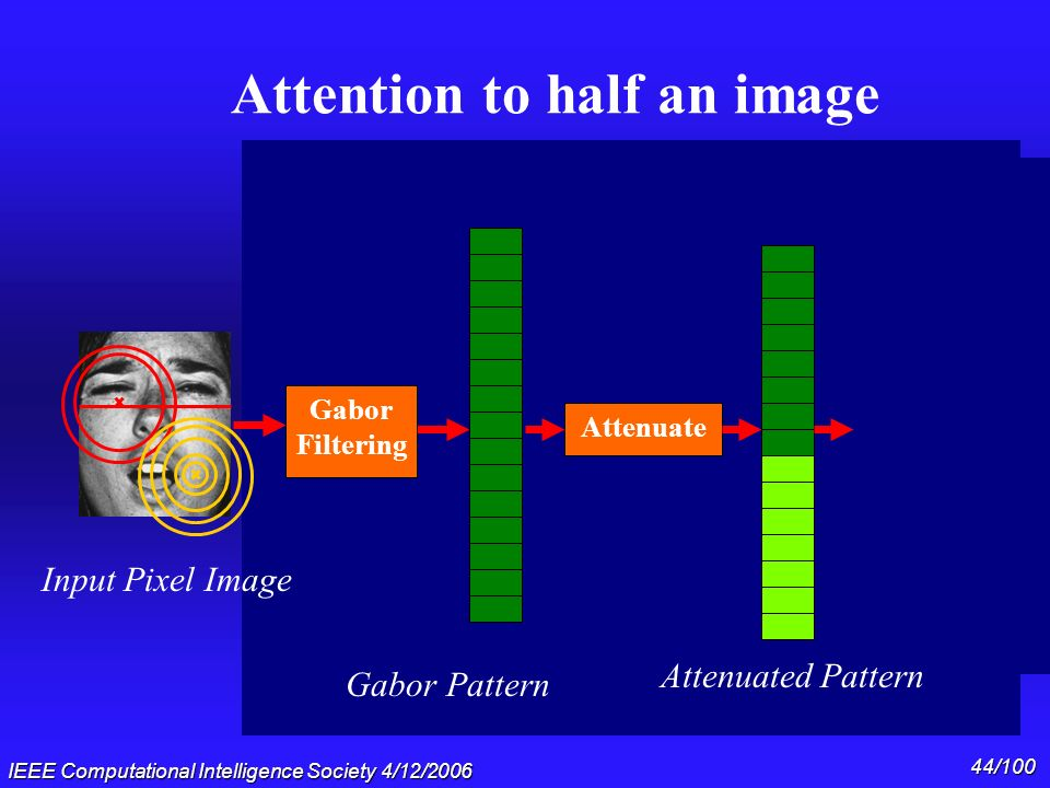 IEEE Computational Intelligence Society 4/12/2006 43/100 Do Holons explain these effects? Clinton/Gore: The outer part of the face votes for Gore. The
