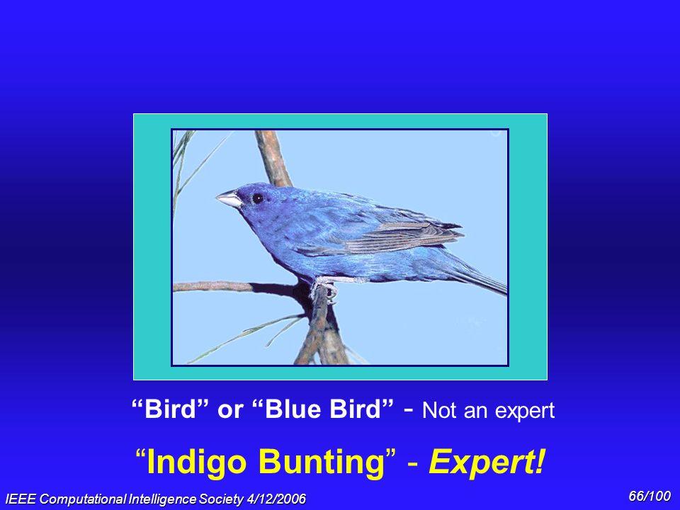 IEEE Computational Intelligence Society 4/12/2006 65/100 Car - Not an expert 2002 BMW Series 7 - Expert!