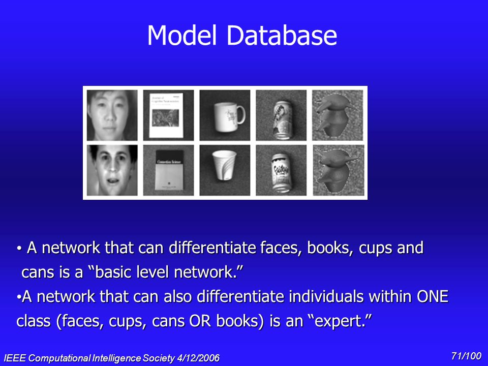 IEEE Computational Intelligence Society 4/12/2006 70/100 Solving the mystery with models n Main idea: There are multiple visual areas that could compe