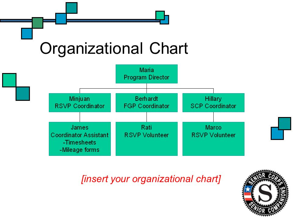 Organizational Chart [insert your organizational chart]