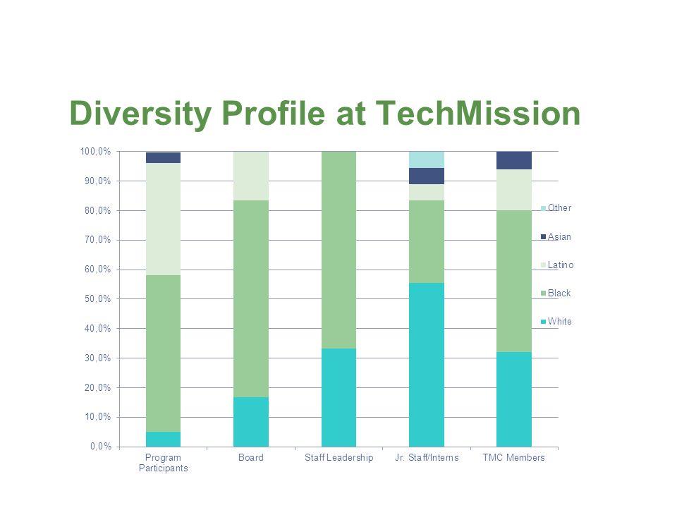 Diversity Profile at TechMission