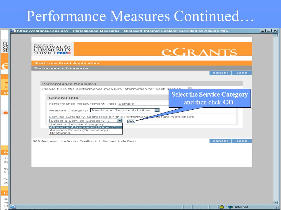 28 Performance Measures Continued… Select the Service Category and then click GO.