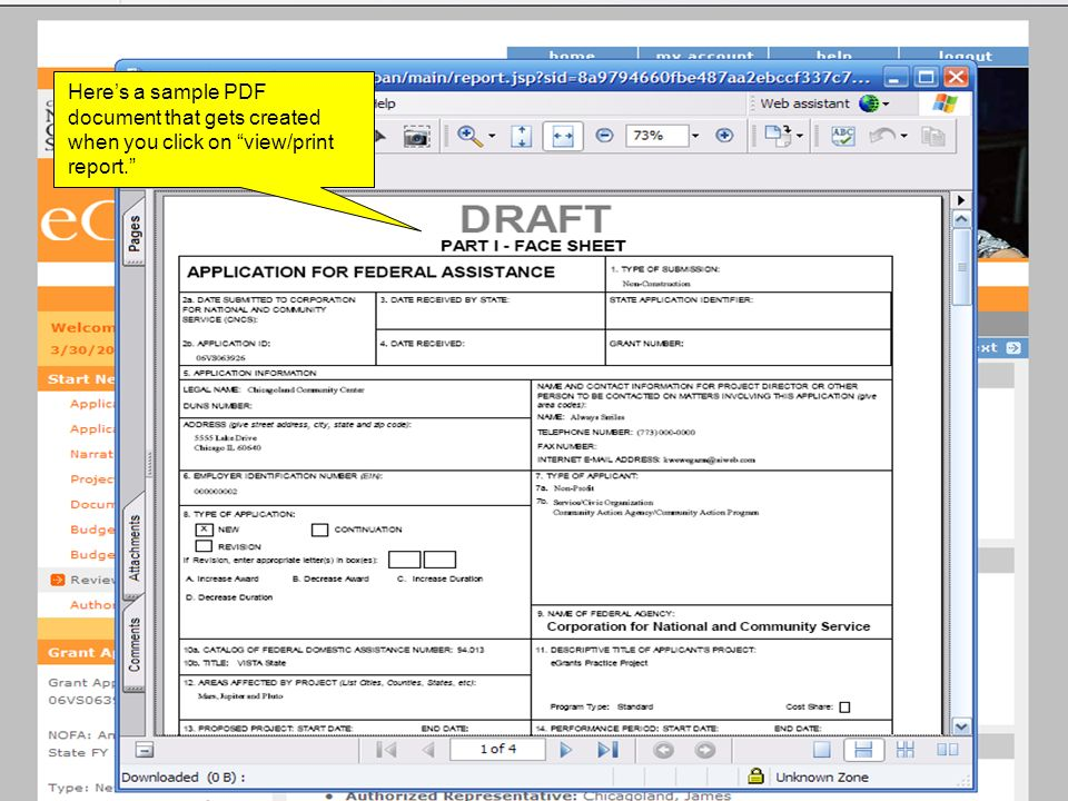 Heres a sample PDF document that gets created when you click on view/print report.