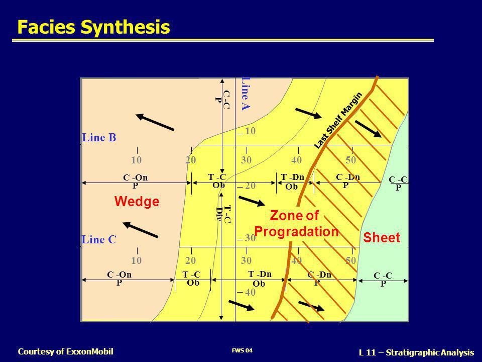 FWS 04 L 11 – Stratigraphic Analysis Courtesy of ExxonMobil Facies Synthesis 10 20 40 30 Line B Line C Line A 1020304050 1020304050 C -On P T -C Ob C