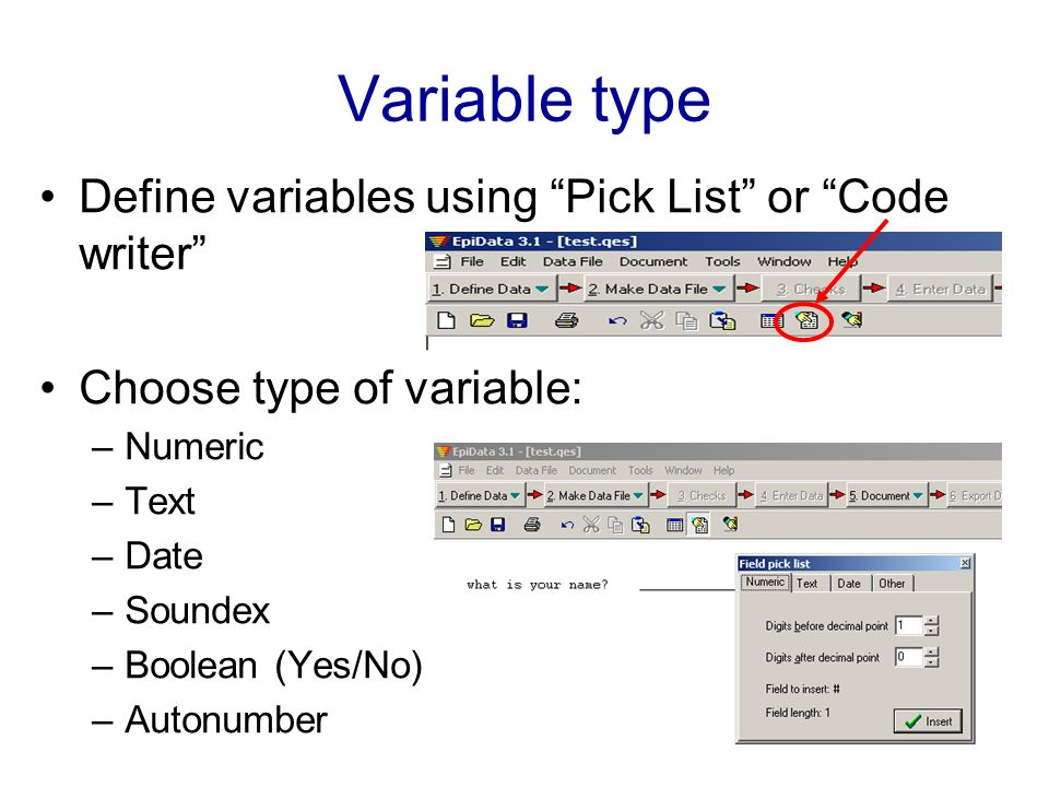 Variable type Define variables using Pick List or Code writer Choose type of variable: –Numeric –Text –Date –Soundex –Boolean (Yes/No) –Autonumber