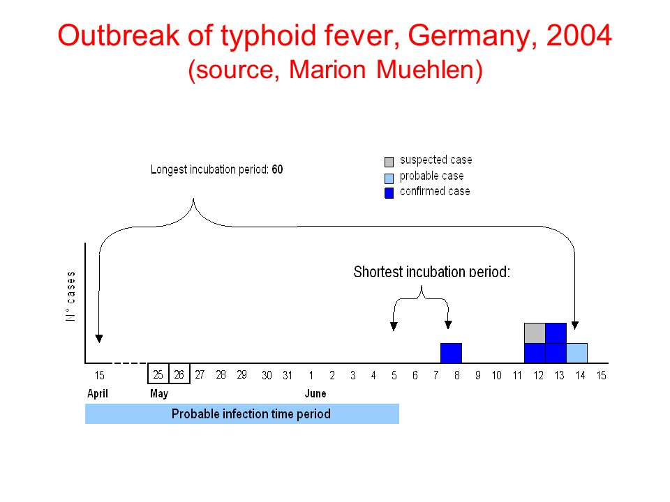 Outbreak of typhoid fever, Germany, 2004 (source, Marion Muehlen)