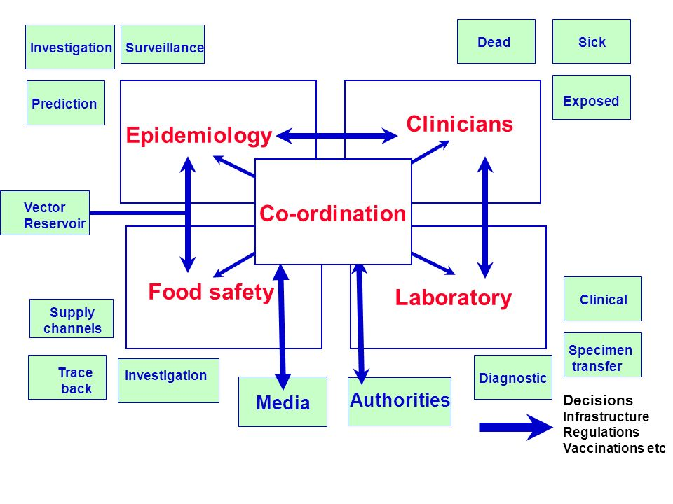 Epidemiology Food safety Clinicians Laboratory Media Authorities Diagnostic Clinical Specimen transfer DeadSick Exposed SurveillanceInvestigation Prediction Supply channels Trace back Decisions Infrastructure Regulations Vaccinations etc Vector Reservoir Investigation Co-ordination