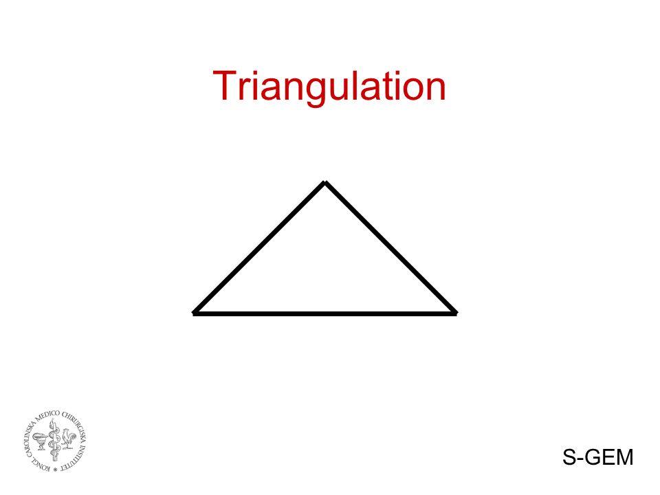 Triangulation S-GEM