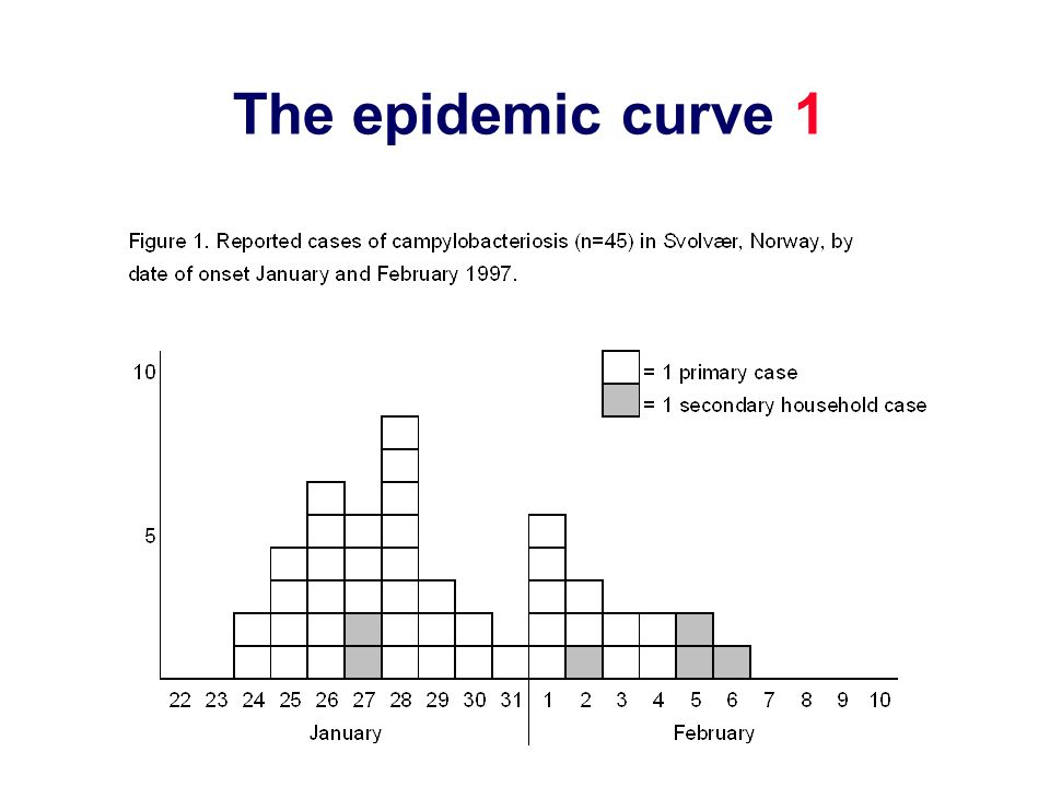 The epidemic curve 1