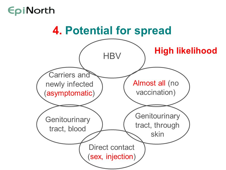 4. Potential for spread HBV Almost all (no vaccination) Carriers and newly infected (asymptomatic) Genitourinary tract, through skin Genitourinary tra