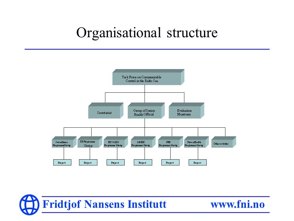 Fridtjof Nansens Institutt www.fni.no Organisational structure